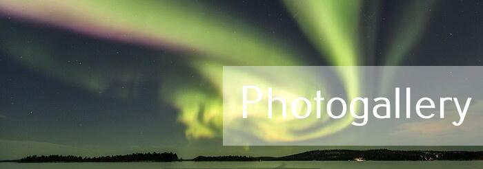 Auroras-0045 (1)